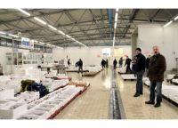 mercato_ittico_3